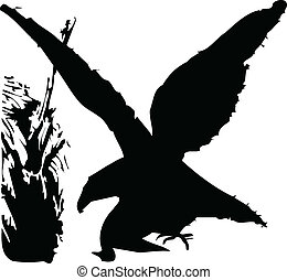 bird silhouette on white background