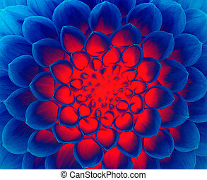 dark blue fire flower - abstract background. dark blue fire...