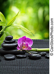 purple orchid with tower stones