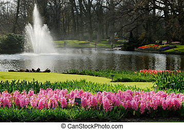 beautiful flower garden - beautiful garden of colorful...