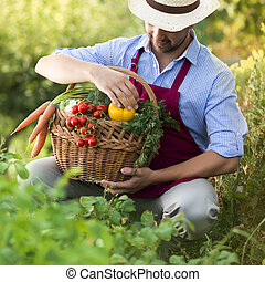 Gardener - Young male gardener working in the garden