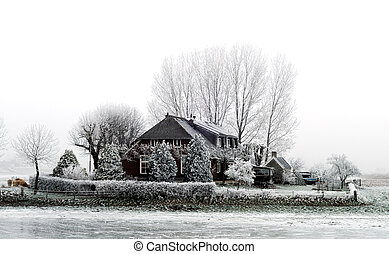 farm in winter - dutch farm with white frozen trees in...