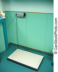 A large scale for pet  in an animal clinic