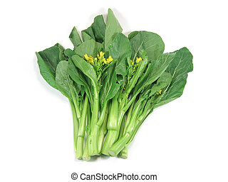 Choy sum, a kind of chinese vegetable in isolated background