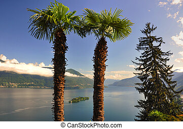 Alpine lake with palm trees and island