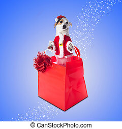 Young Jack Russel wearing santa claus dress in red shopping...