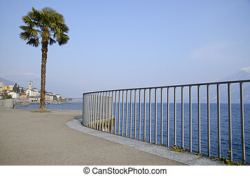 Palm tree on the lakefront with a village and blue sky with...