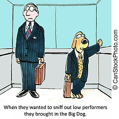 Consultant - When they wanted to sniff out low performers...