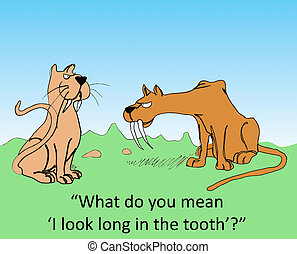 "Baby Boomer - ""What do you mean 'I look long in the tooth'?"""