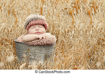 Beautiful fall baby portrait - Newborn baby in a fall...