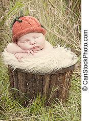 Little pumpkin baby