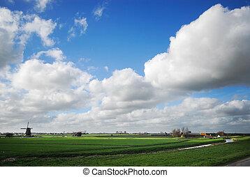 dutch landsape - summer landscape in the netherlands