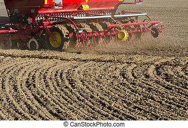 trabalhando, campo, seeder, maquinaria, cereal, Novo, grão,...