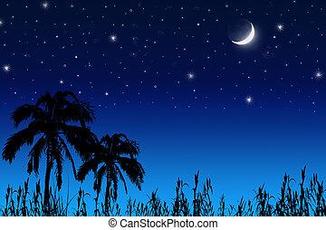 orzech kokosowy, drzewo, księżyc, gwiazdy
