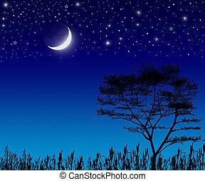drzewo, księżyc, gwiazdy