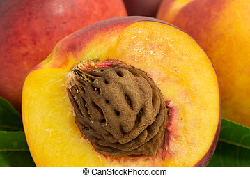 nectarine fruits with pits and leaves close-up