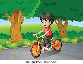 A boy biking near the big trees