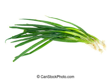 green onion isolated on a white background