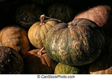 Pumpkins, danhobak, and kabocha at the market in South Korea...