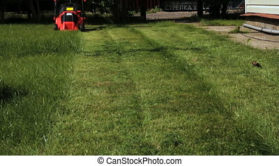 Garden worker cutting overgrown grass with lawn mower...
