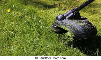 Lawn mower.  - Cutting grass with lawn mower. Close Up.