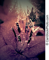 Fairy and flower - Abstract illustration with fairy and...