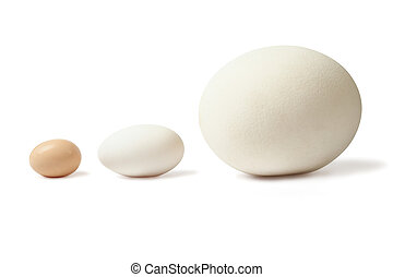 Thre eggs lined - Three eggs of different size - chicken...
