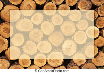 A pile of cut tree trunks with year rings in framework - A...