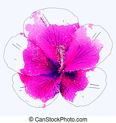 Watercolor pink hibiscus - Background with pink hibiscus...