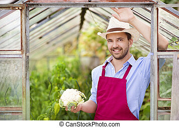 Gardener - Young male gardener working in the greenhouse