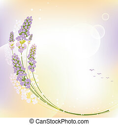 Purple Lavender Flower Greeting Card - Purple Lavender...