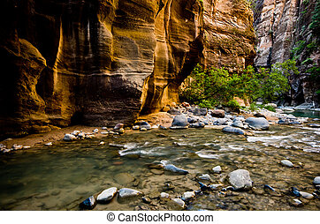 Scenery from The Narrows hike at Zion National Park. -...