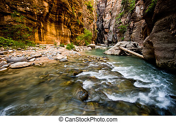 Scenery from The Narrows hike at Zion National Park.