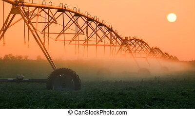 Crop Irrigation at Sunset - Industrial irrigator spraying...