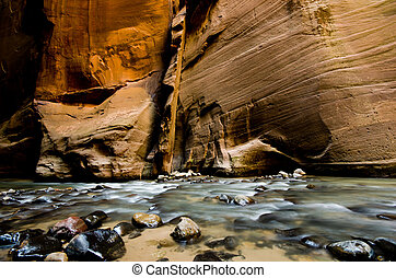 The canyon wall in  The Narrows, a hike at Zion National Park.