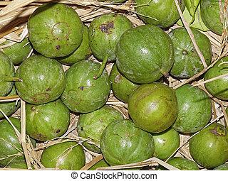 Alu, fruta, Vangueria, spinosa, Meyna, laxiflora, Rubiaceae