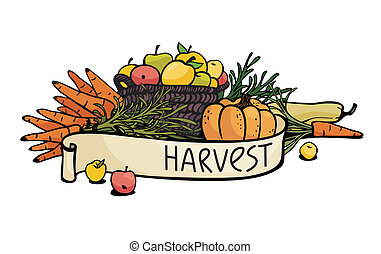 vegetables and fruits - harvest of vegetables and fruits....
