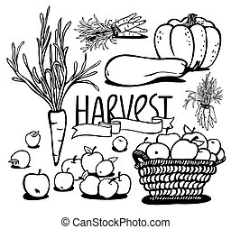 vegetables and fruits - harvest of vegetables and fruits...