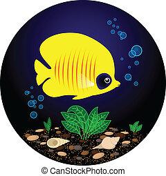 tropische, gelber, fische