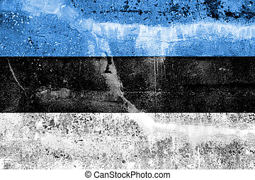 Estonia Flag painted on grunge wall