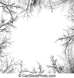 Tree branches silhouette - Illustration of tree branches...