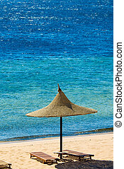 topical beach and turquoise water