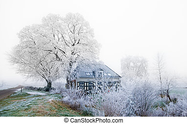 small dutch house in winter - small dutch house surrounded...