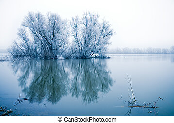 winter landscape scene withe frozen trees in a flooded river...