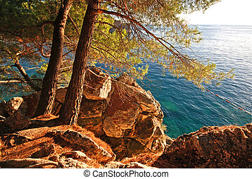 summer landscape with Adriatic Sea and pine tree - Beautiful...