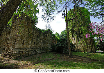 Old ruin castle - Old ruin stone castle with ivy on the...