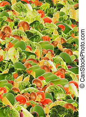 vegetal, fundo