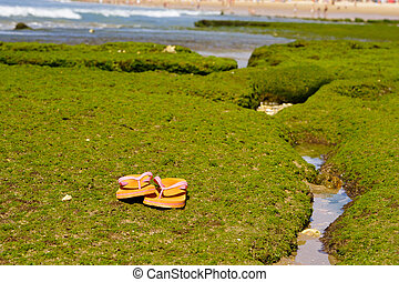 Still life on the beach at morning with and flip flop