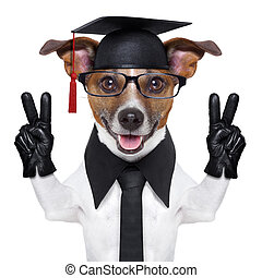 graduate dog with peace fingers and happy