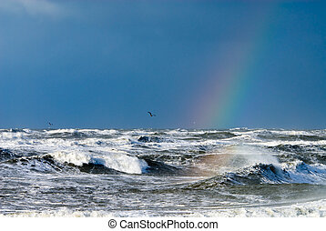 ocean and raindbow